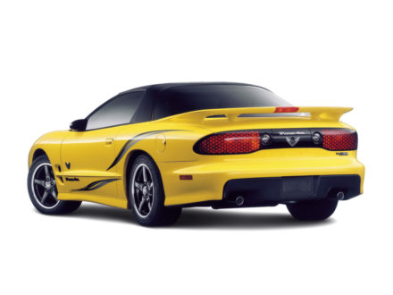 2002 Pontiac Trans AM Collector Edition Stripes and Decals