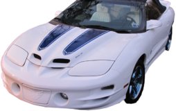 30TH ANNIVERSARY PONTIAC TRANS AM STRIPE KIT